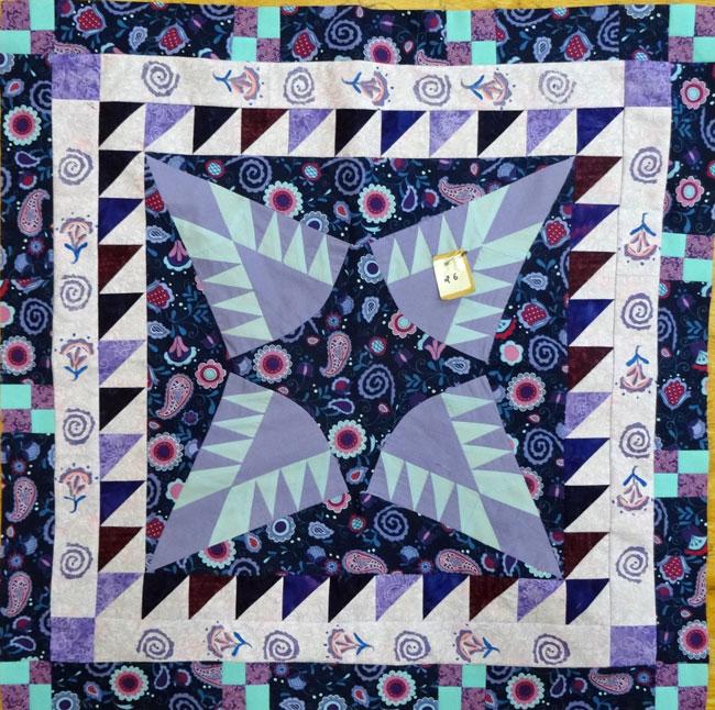 Sew A Row Blocks At The Santa Rosa Quilt Guild