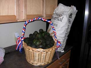 picture of bag of avacados